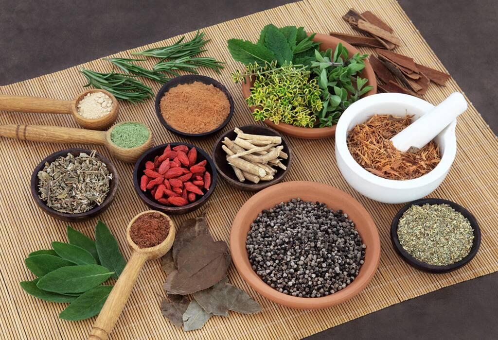 Ayurveda: medicinas y especias