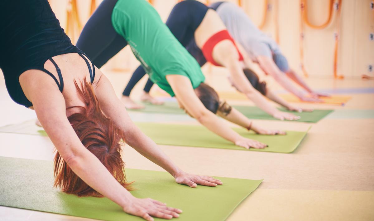 Tipos de Yoga: ¿Cuál es mejor para ti?
